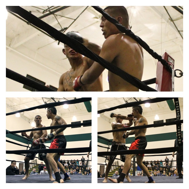 Bout 9  Collage of the punches 2
