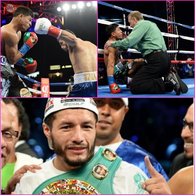 (top left) Johnny Gonzalez winds up to deliver the knockout blow. (top right) Referee Tom Reiss has to explain to the confused Abner Mares that he has already been issued the 10-count. (bottom) Jhonny Gonzalez is shown celebrating his win with his supporters. All photos: Harry How/Getty Images