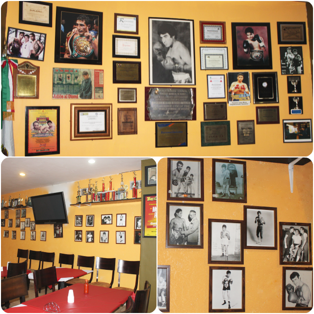 With the sheer numbers of boxing greats from Mexico, it is ludicrous, preposterous, almost laughable that Mexico doesn't have a Boxing Hall of Fame.