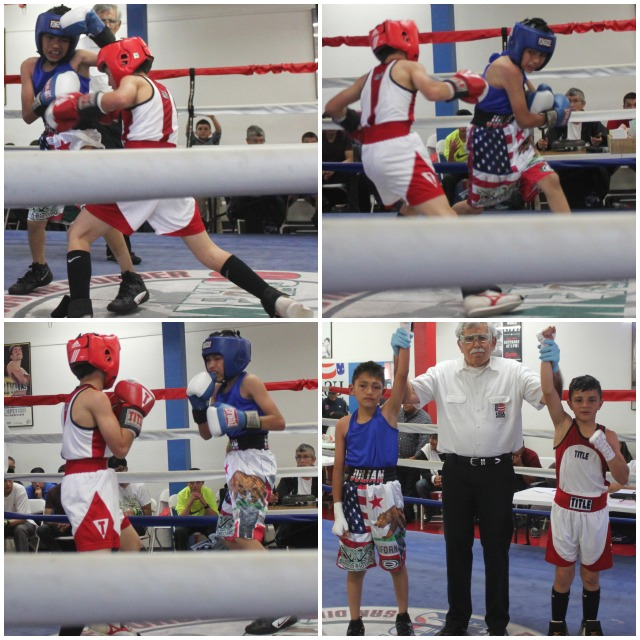 In Bout #3, it was Julius Ballo (red head gear) battling it out with Julian Rojas (blue head gear). (bottom, right) the two combatants, Julius Ballo (r) and Julian Rojas (l) have their arms raised by veteran referee Will White.