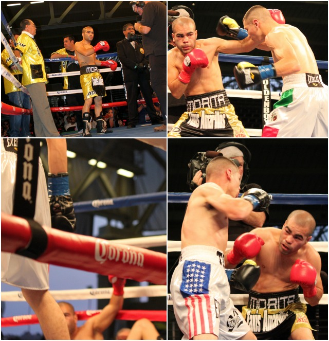 (below, left) Manuel Avila (white trunks) is shown getting the first of his three knockdowns against David De La Mora (sitting).  Photos: jim Wyatt