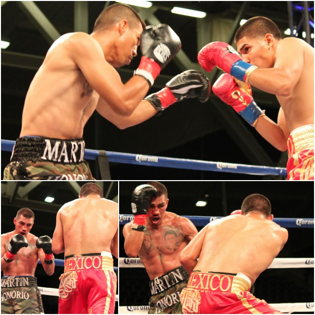 Here we have the opening round with the two boxers, Antonio Orozco (red trunks) and martin Honorio (camaflauge trunks) feeling each other out, drawing up their game plan. Photos: Jim Wyatt