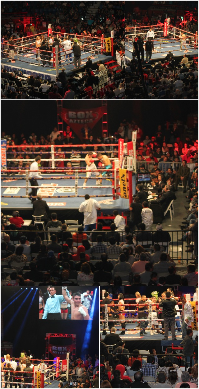 Bout #11 featured Mario Rodriguez (8-9-4) going up against Armando Torres (21-13-1) in bout scheduled to go 10 rounds.