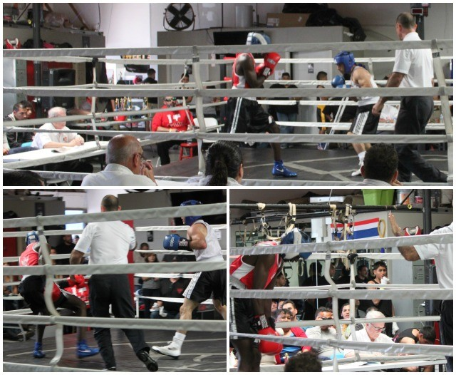 Above photos show the sequence of events that led referee Dana Kaplan to call for a stoppage to issue Daniel Morrales (red gloves) a standing 8-count.