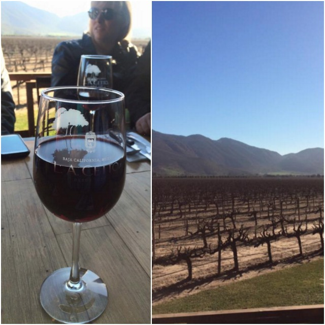 Departure to Valle de Guadalupe for lunch and winery tour
