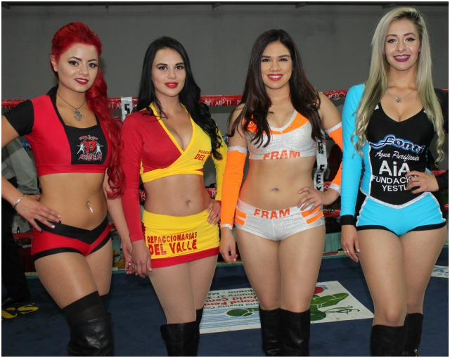 What kind of a show is it, if you don't have the beautiful models of Tijuana acting as ring card girls.